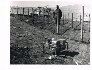 Babocomari First Planting