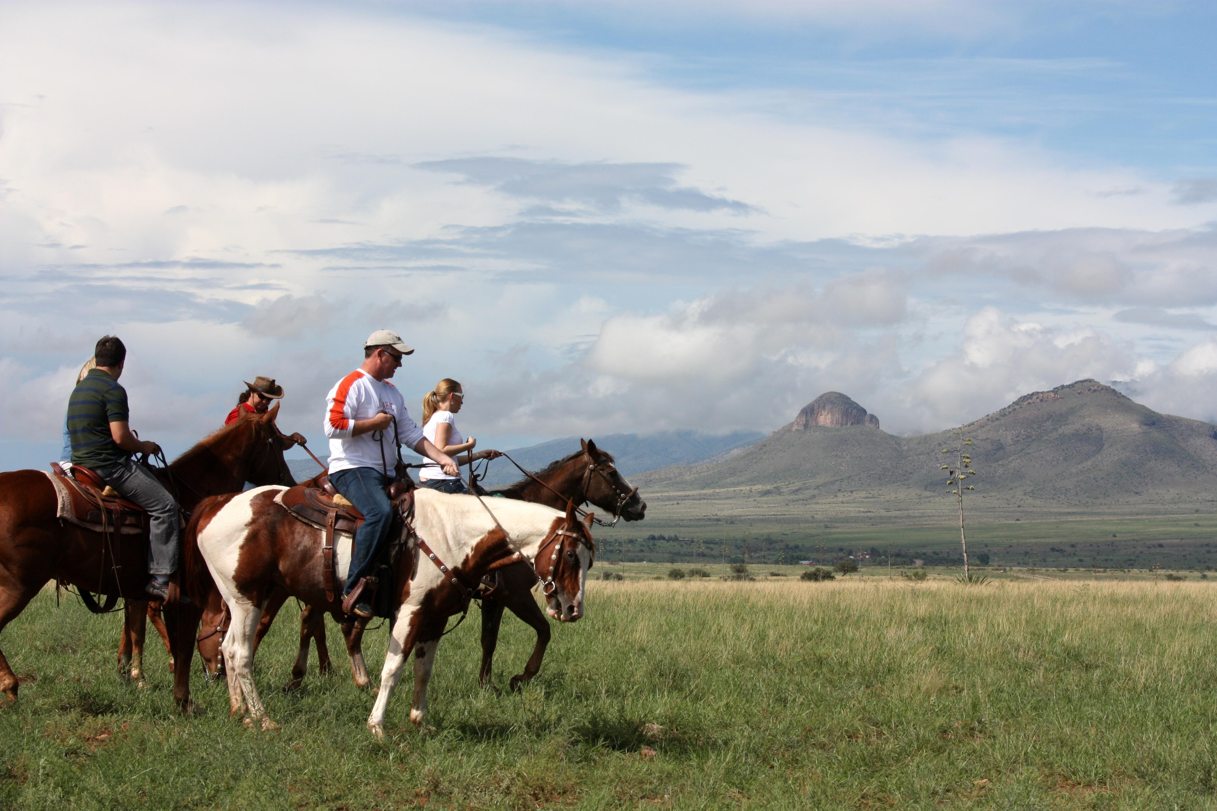Fest-horse-ride